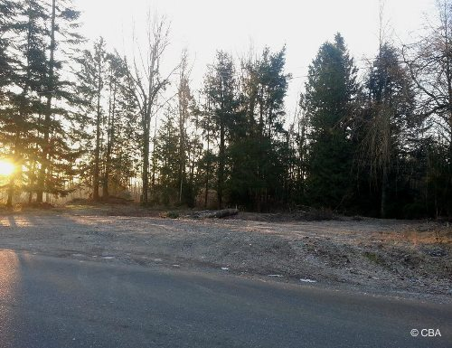 Primary Listing Image for MLS#: 523674