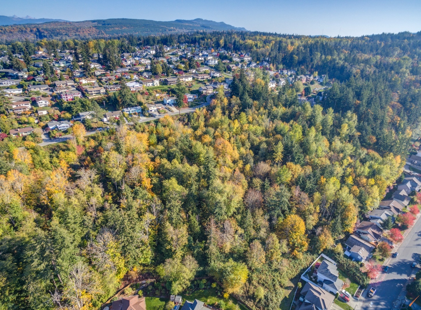 Primary Listing Image for MLS#: 603371
